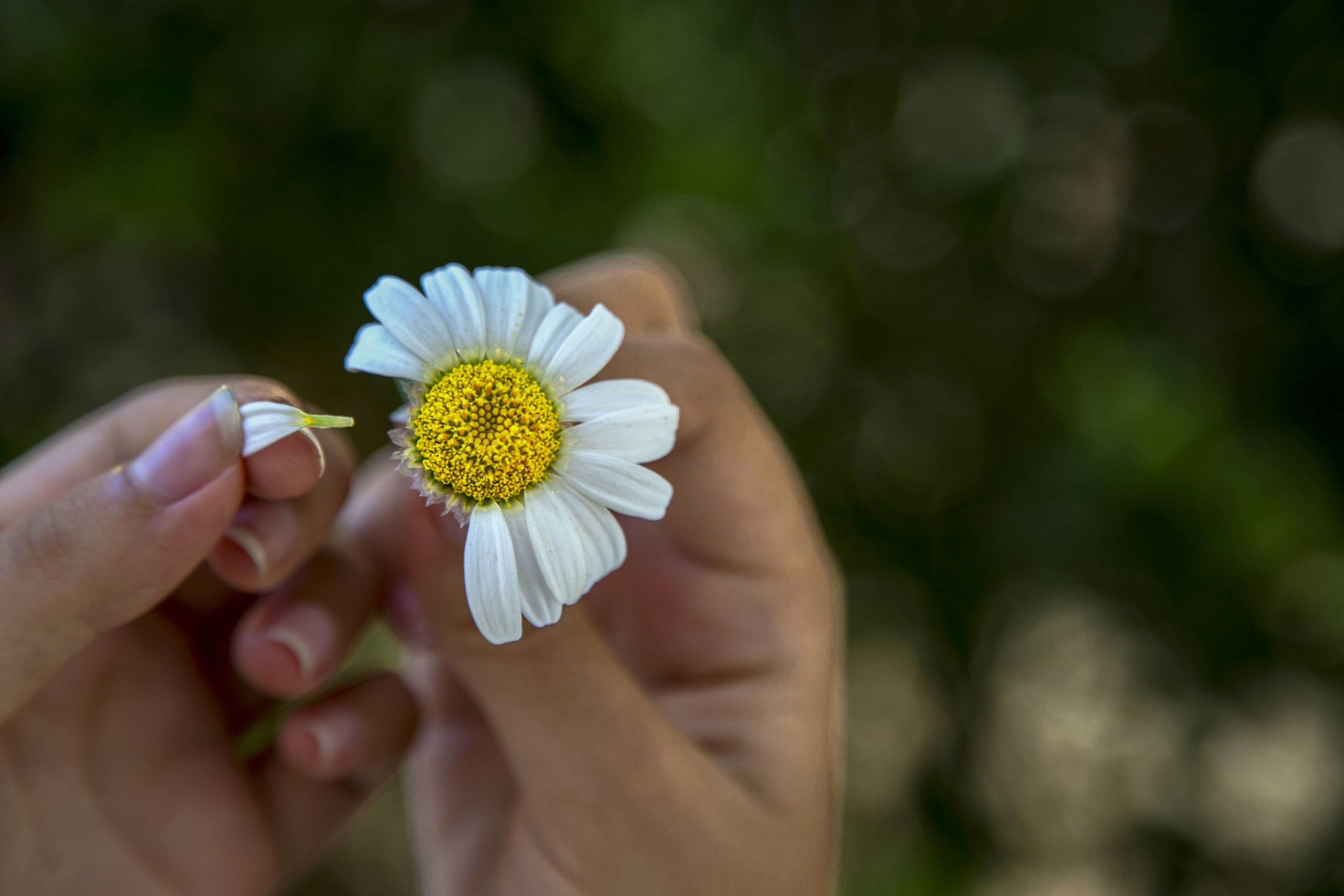 《真木あかりの恋愛占い》|【諦めるべきか…迷われている方へ】この恋の見極め方を教えます…